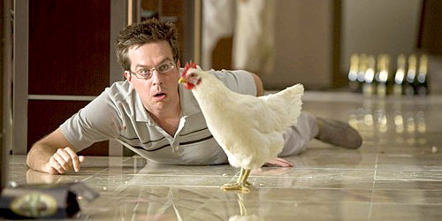 Ed Helms with a chicken - The Hangover